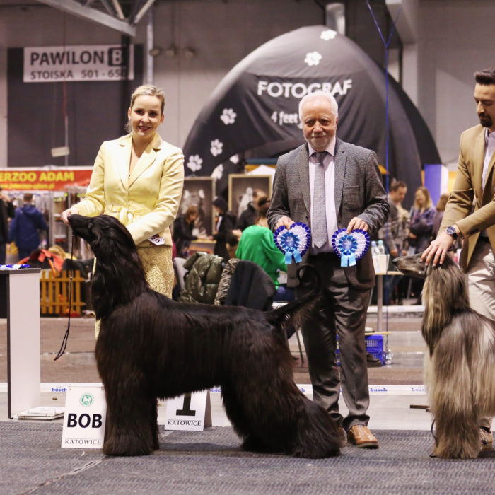 Brian May Gandamak afghan hound jean jacques dupas judge